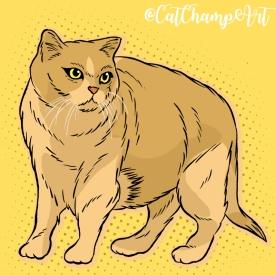 cat.XX