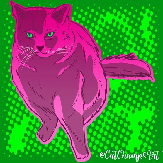 cat37