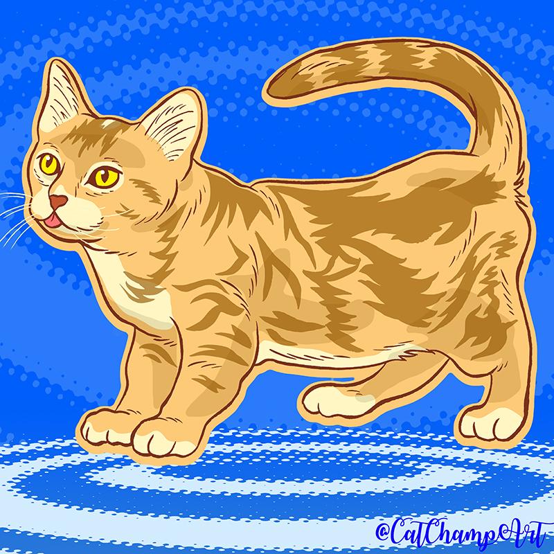 Watercat